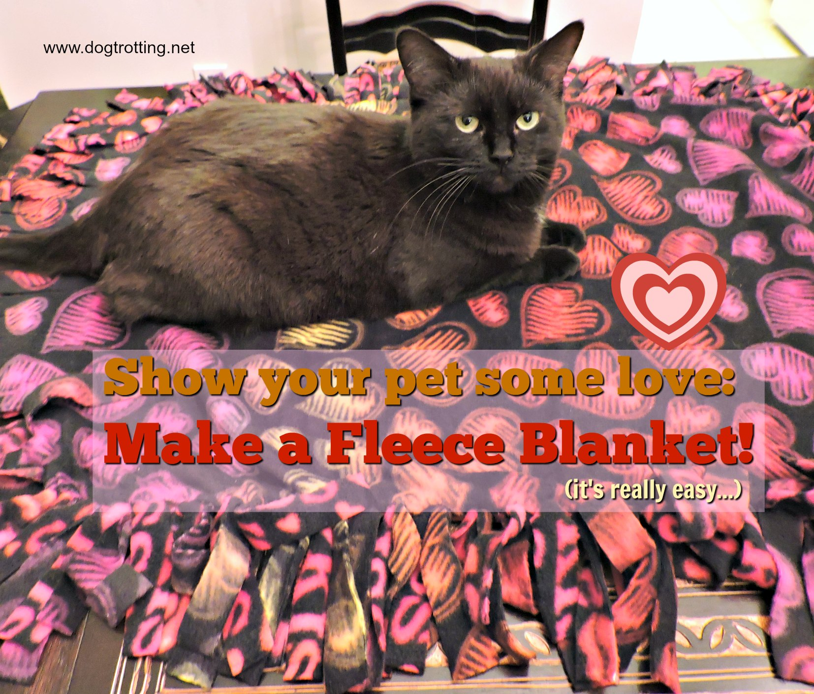 DIY Fleece dog blanket project