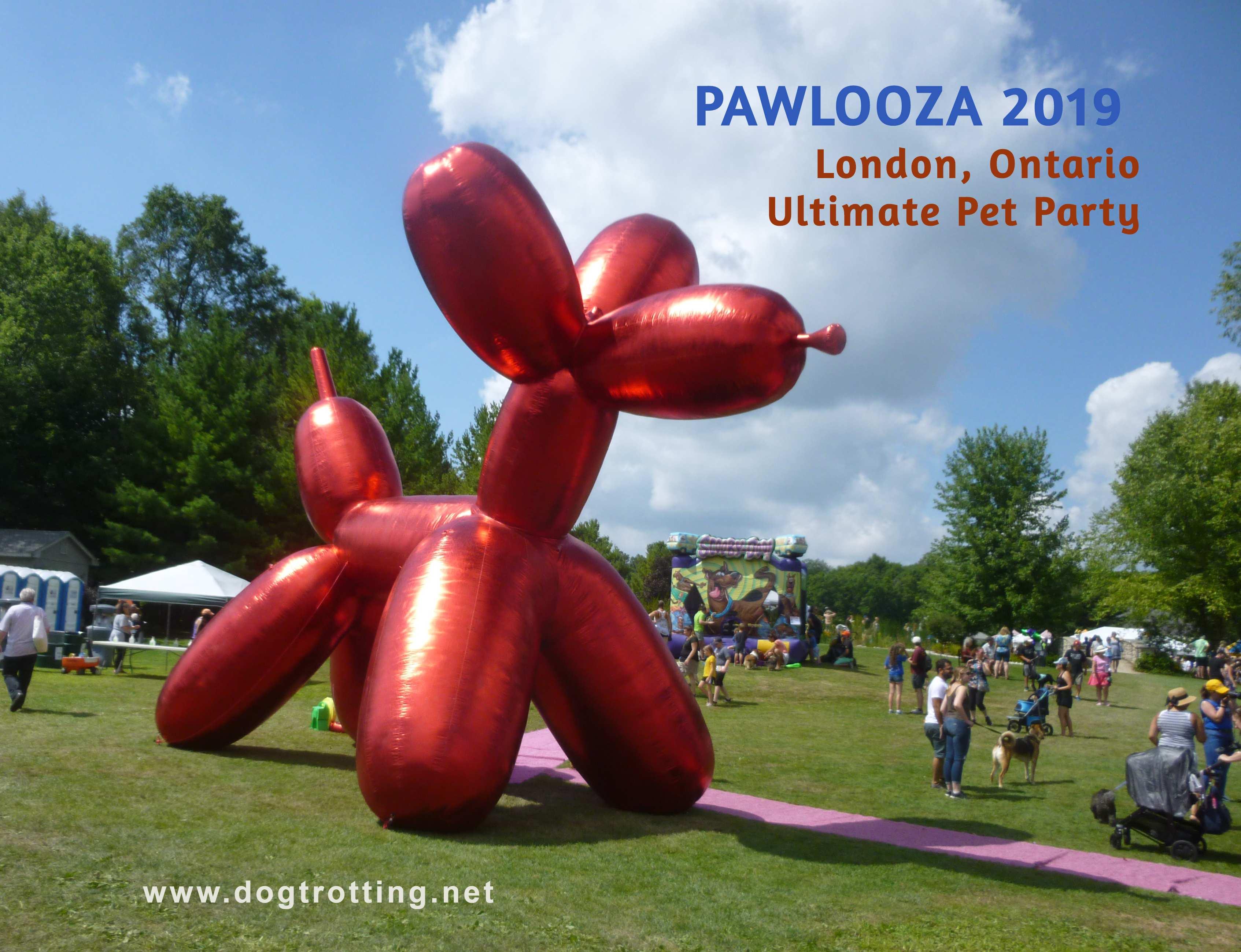 big red dog balloon at Pawlooza 2019 dog festival