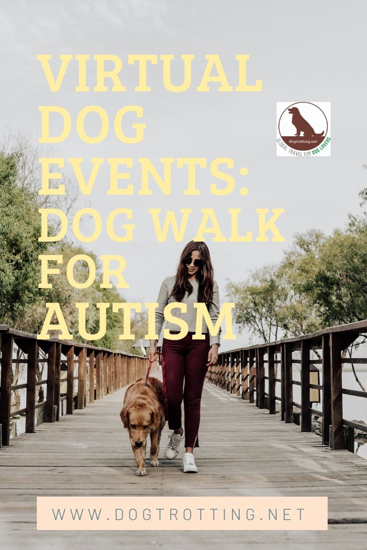 dog and woman walking on bridge with text: virtual dog events