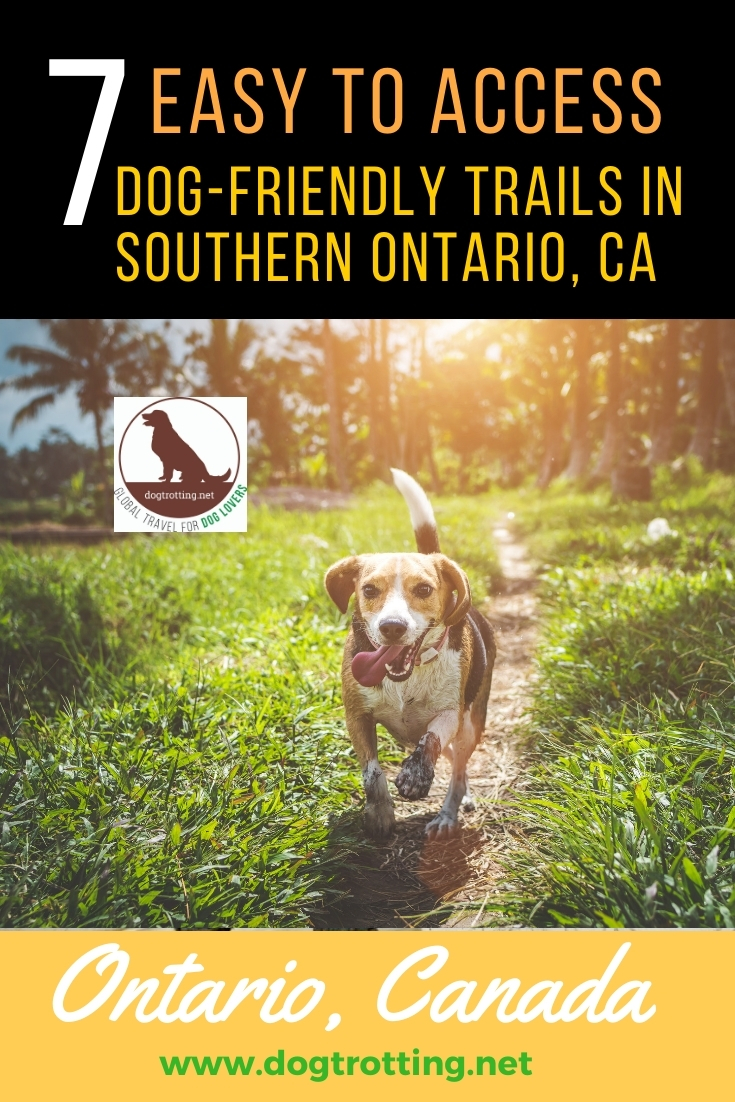 dog runningwoods - dog-friendly trails in southern ontario canada