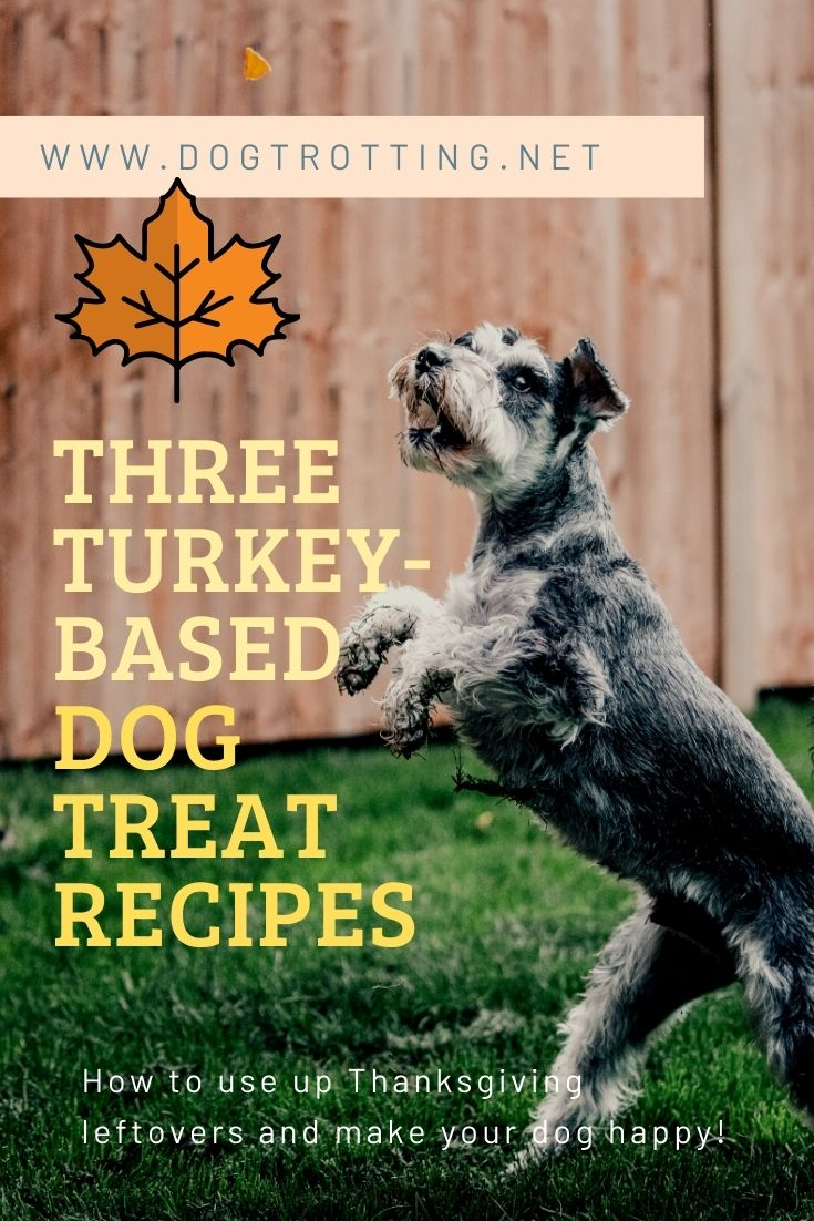jumping dog grabbing treat turkey based dog treat recipes