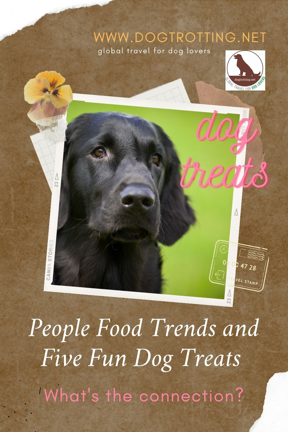 black lab dog with graphics: people food and dog treats. What's the connection?