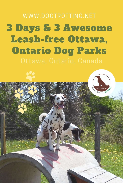 leash free dog parks in ottawa, ontario