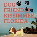 cartoon dog on beach - Dog friendly Kissimmee Florida